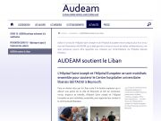 Page type Audeam
